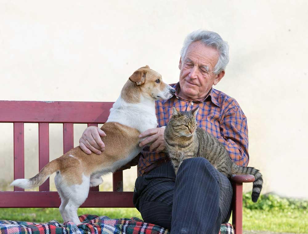 Faire garder son animal de compagnie par un retraité, ce qu'il faut savoir